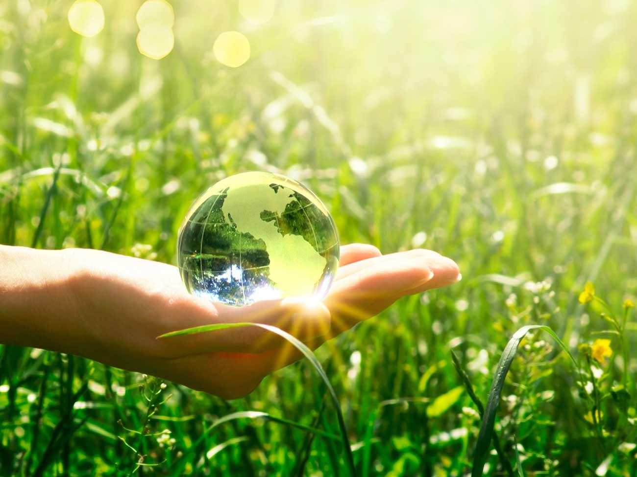 Hand mit Glaskugel in der Hand uaf einer grünen Wiese
